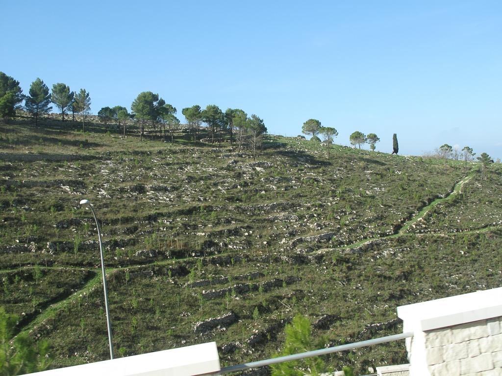 Sicily_230.jpg