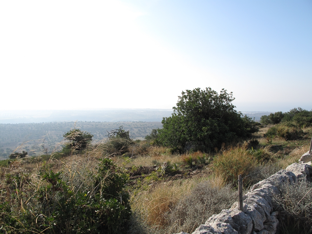 Sicily_289.jpg