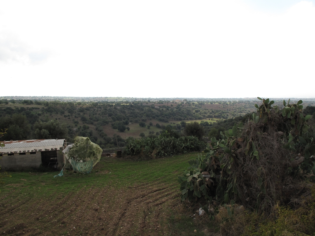 Sicily_334.jpg