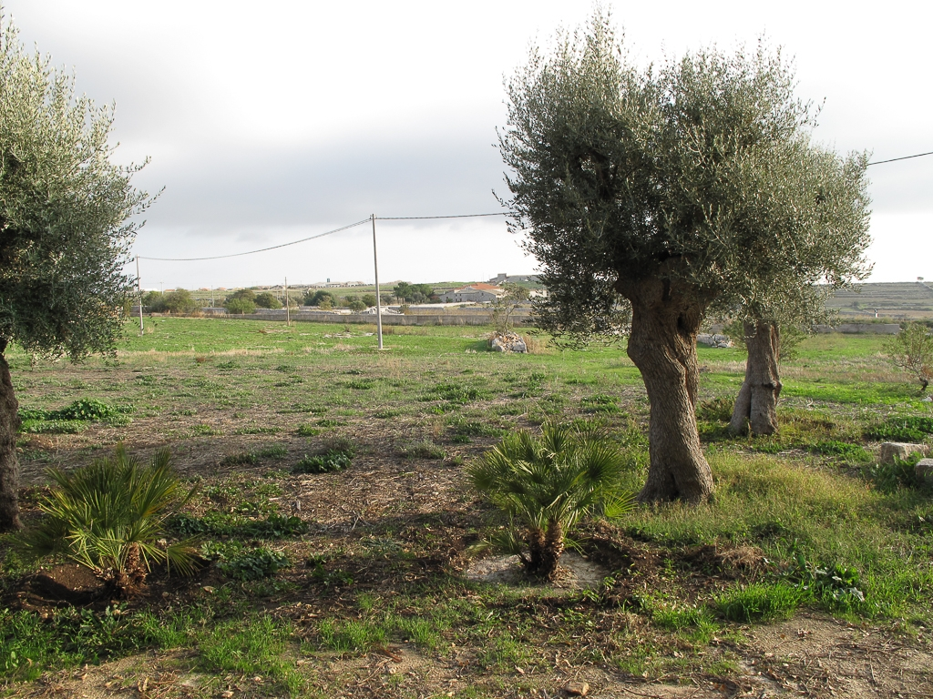 Sicily_366.jpg