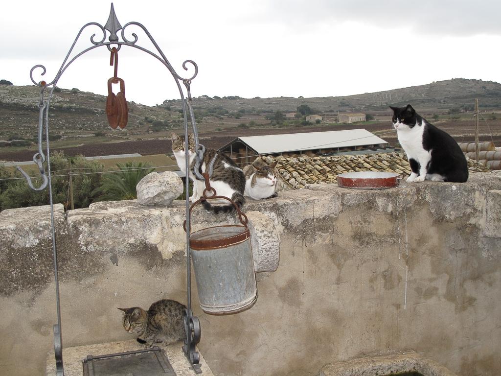Sicily_381.jpg