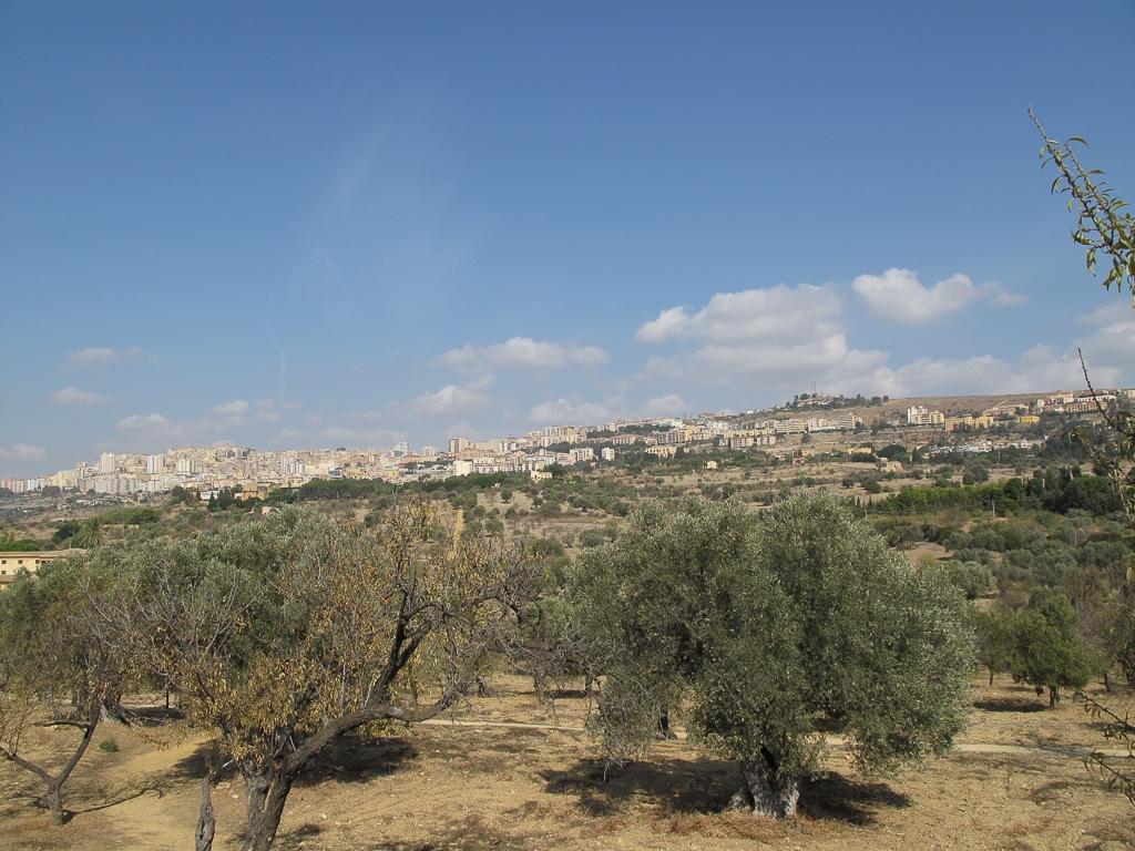 Sicily_458.jpg